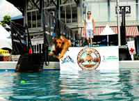 Dockdogs Competition at Norfolk Harborfest