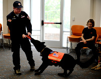 Owner David Wyttenbach, left, and Sirius Black have a tug-of-war over a frisbee during a search and rescue dog demonstration at Martha Washington Library on April 20, 2011. Search and rescue technique