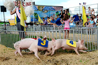 IRENE ROJAS/MissourianSara Wilsdorf, left, cheers on a pig during a pig race at the Boone County Fair on Thursday, July 23, 2009.